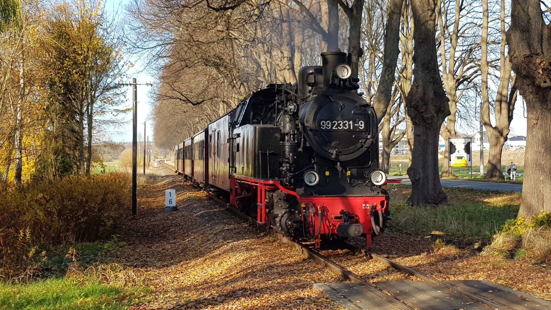 Molli Bad Doberan 2019 auf Borkum
