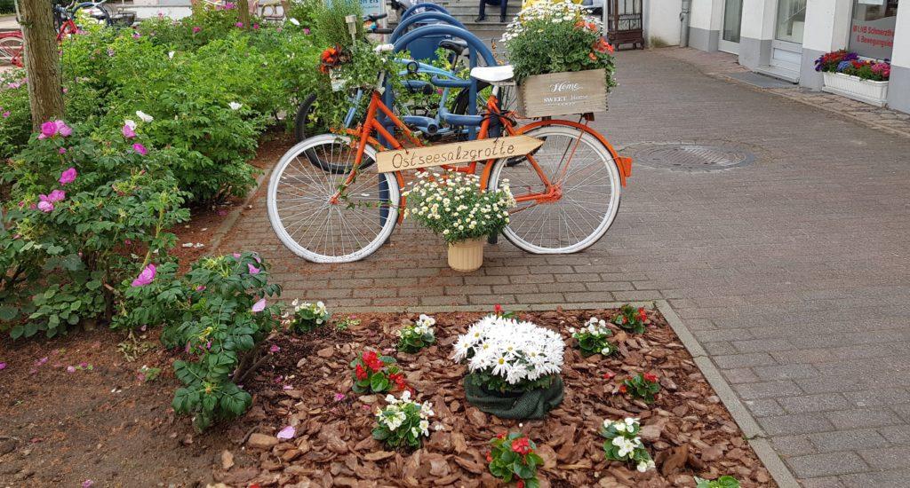 Blumenräder für Bad Doberan ~ ERSTES SEEBAD
