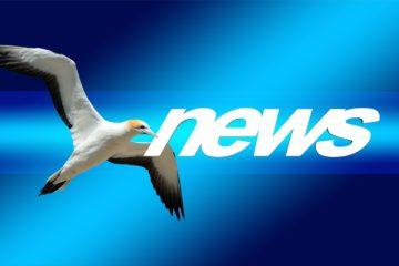 News und Nachrichten aus Bad Doberan - Heiligendamm